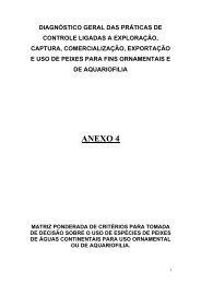 Anexo 4 - Ibama