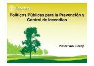 Políticos Públicas para la Prevención y Control de Incendios - Ibama