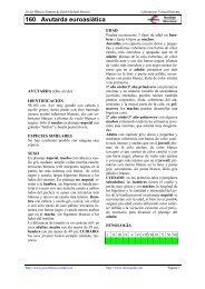 Avutarda euroasiática - Laboratorio Virtual Ibercaja