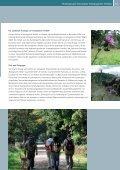 Praxisleitfaden Tourismus & biologische Vielfalt - Ökologischer ... - Page 5