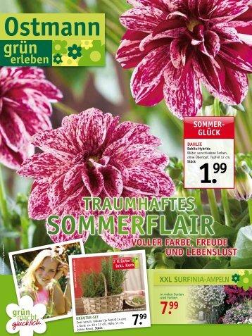 sommerFlair - Blumen Ostmann GmbH