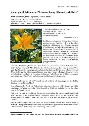 Kulturgeschichtliches zur Pflanzenordnung Lilienartige ... - GTFCh
