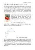 Kulturgeschichtliches zur Pflanzenordnung Lilienartige ... - GTFCh - Page 5
