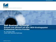 Paket 3 – Professional Service Provider - IBIS Prof. Thome AG