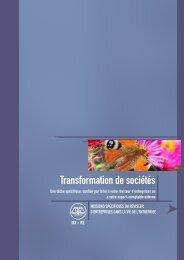 Transformation de sociétés (2008/4) - IBR