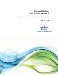 Rural Broadband Initiative (PDF) Call for proposals and program ...