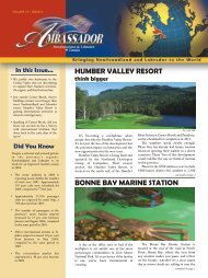 Humber Valley Resort - Innovation, Business and Rural Development