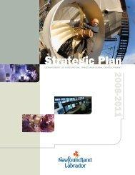 2011 Strategic Plan - Innovation, Business and Rural Development
