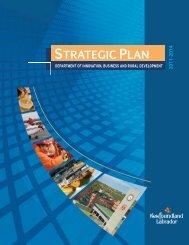 2011 - 2014 IBRD Strategic Plan - Innovation, Business and Rural ...