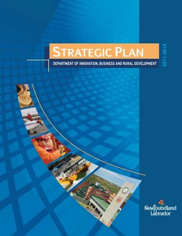 2011 - 2014 IBRD Strategic Plan - Innovation, Business and Rural ...