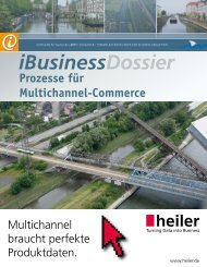 Kostenloser Download - iBusiness