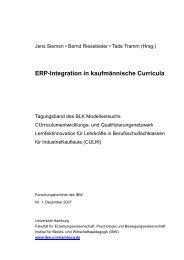 ERP-Integration in kaufmännische Curricula - Institut für Berufs- und ...
