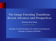 The Image Foresting Transform: Recent Advances and ... - Unicamp