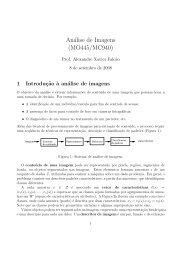 Análise de Imagens (MO445/MC940)