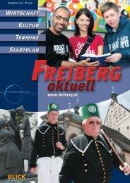 Freiberg Aktuell 06/2013 - Page Pro Media GmbH