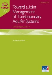 Toward a Joint Management of Transboundary Aquifer Systems