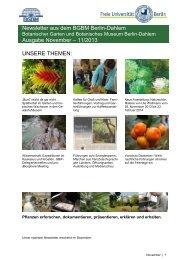 Newsletter aus dem BGBM Berlin-Dahlem Ausgabe November – 11 ...