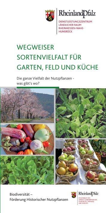 Wegweiser Sortenvielfalt Fur Garten Feld Und Kuche Dlr