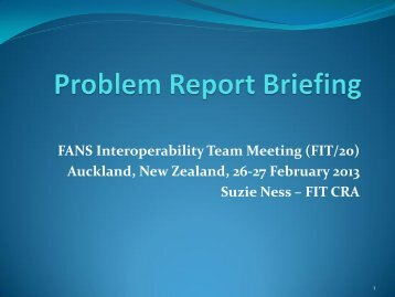 FIT-19 Problem Report Briefing - ICAO