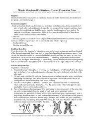Mitosis, Meiosis and Fertilization -- Teacher Preparation Notes