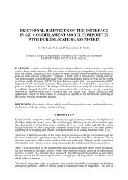 frictional behaviour of the interface in sic monofilament ... - ICCM