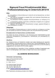 Professionalisierung im Unterricht Gesamtinformation (pdf)