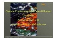 Globale Erwärmung und Desertifikation Ursachen, Auswirkungen ...