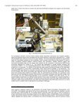 Dual Detection X-ray Fluorescence Cryotomography and ... - ICDD - Page 3