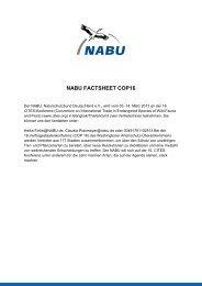 NABU FACTSHEET COP16