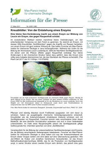 Kreuzblütler: Von der Entstehung eines Enzyms - Max Planck ...