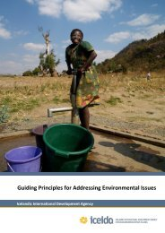 Guiding Principles for Environmental Issues