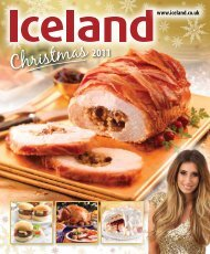 Christmas 2011 - Iceland