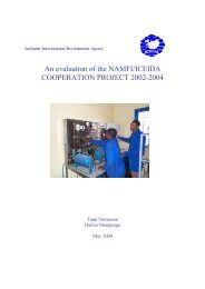 An Evaluation of the NAMFI/ICEIDA Cooperation Project 2002 -2004