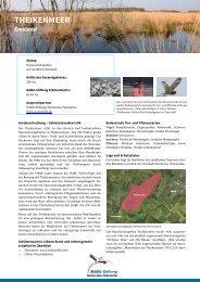 THEIKENMEER - NABU-Stiftung Nationales Naturerbe