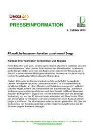 PRESSEINFORMATION 2. Oktober 2013 ... - Dessau-Roßlau