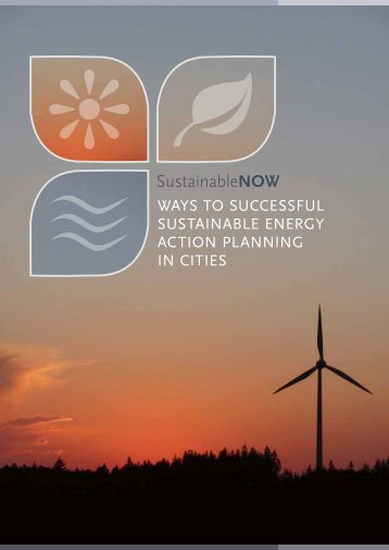 Ways to successful sustainable energy action ... - ICLEI Europe