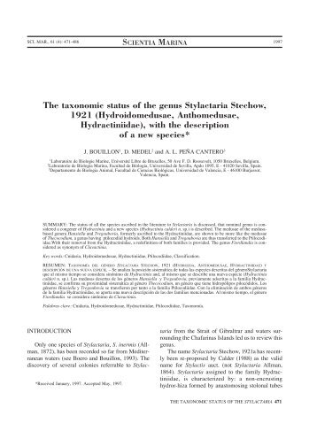 The taxonomic status of the genus Stylactaria Stechow, 1921 ...