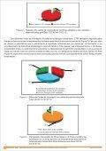 Boletim_Cecav_ano 3_EdicaoEspecial_JAN2011.pdf - Page 3