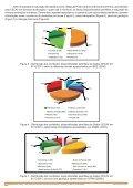 Boletim_Cecav_ano 3_EdicaoEspecial_JAN2011.pdf - Page 4