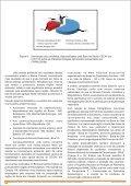 Boletim_Cecav_ano 3_EdicaoEspecial_JAN2011.pdf - Page 5