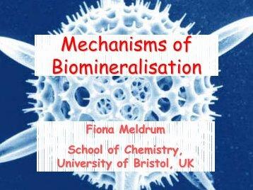 Mechanisms of Biomineralisation