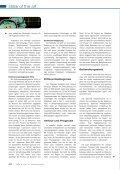 Epilepsie - Seite 3