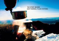 THE STORY BEHIND OUR THERMAL FLUID ... - Bertrams Heatec AG