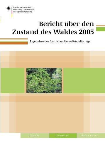 Bericht über den Zustand des Waldes 2005 - ICP Forests