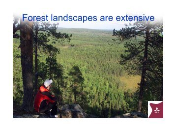 Forest landscapes are extensive - ICP Forests