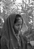 Download - NETZ Bangladesch - Page 4