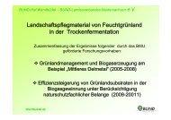 BUND Wendbüdel, Dr. Wulf Carius