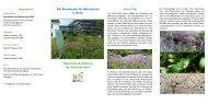 Das Bundesamt für Naturschutz in Bonn Naturnahe Gestaltung der ...
