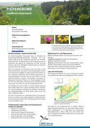 PIEPERGRUND - NABU-Stiftung Nationales Naturerbe