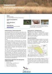 ZIMMERSEE - NABU-Stiftung Nationales Naturerbe